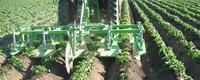 AVR - Cultivadores